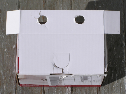 Faces_Inanimate Objects_Box